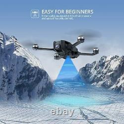 Holy Stone HS720E HS105 4K EIS Camera Drone Brushless GPS FPV Selfie Quadcopter